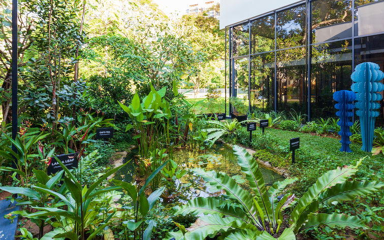 vegetable garden - EDGEPROP SINGAPORE