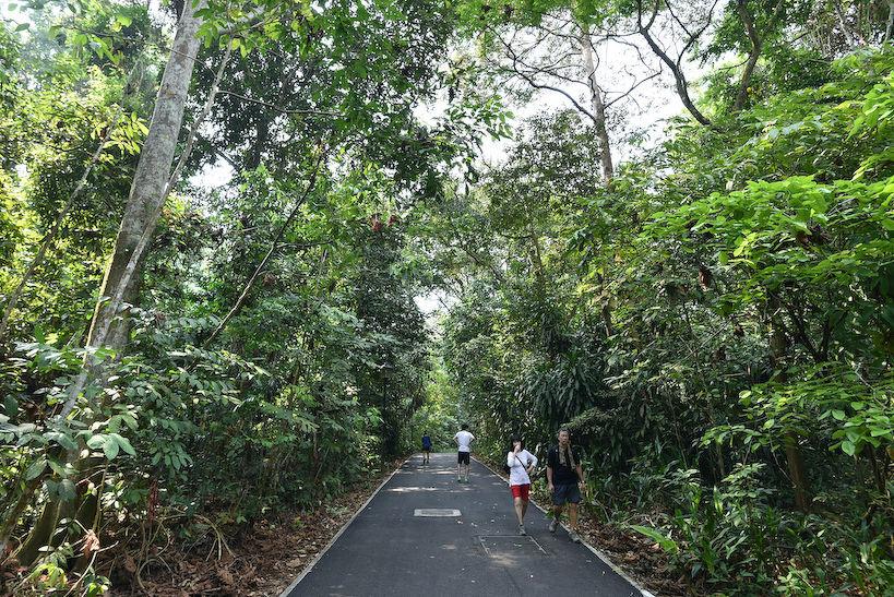 Bukit Timah Nature Reserve - EDGEPROP SINGAPORE
