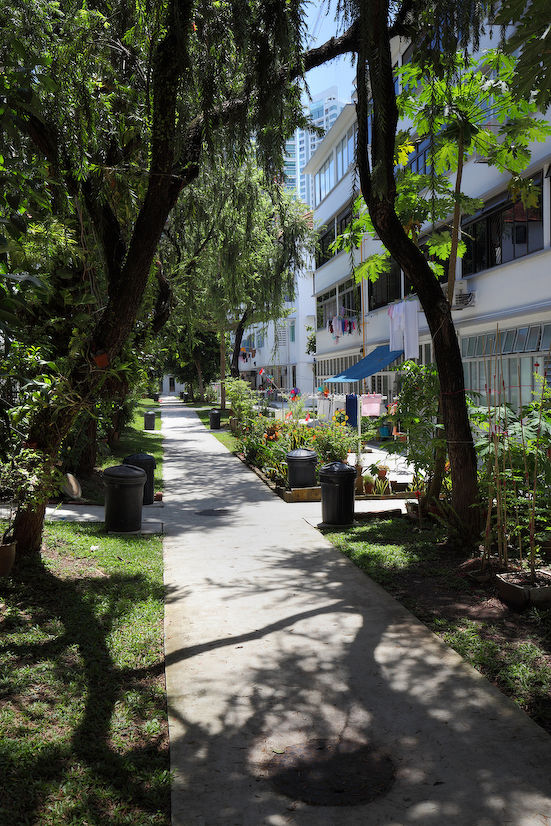 LEI-WALKABOUT-IN-TIONG-BAHRU - EDGEPROP SINGAPORE