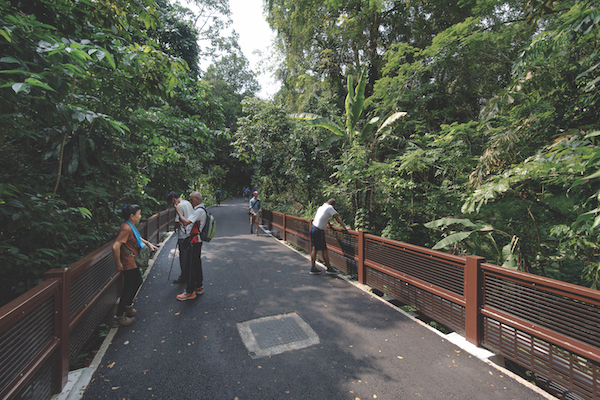 One of the attractions of living in the Dairy Farm area is its proximity to Dairy Farm Nature Park (left) and Bukit Timah Nature Reserve (Photo: Albert Chua/EdgeProp Singapore)