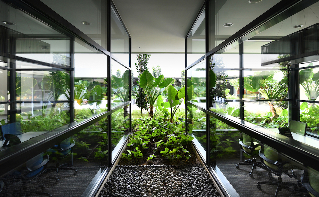 SOILBUILD - The meeting rooms at Soilbuild's headquarters have views of the landscaped courtyard