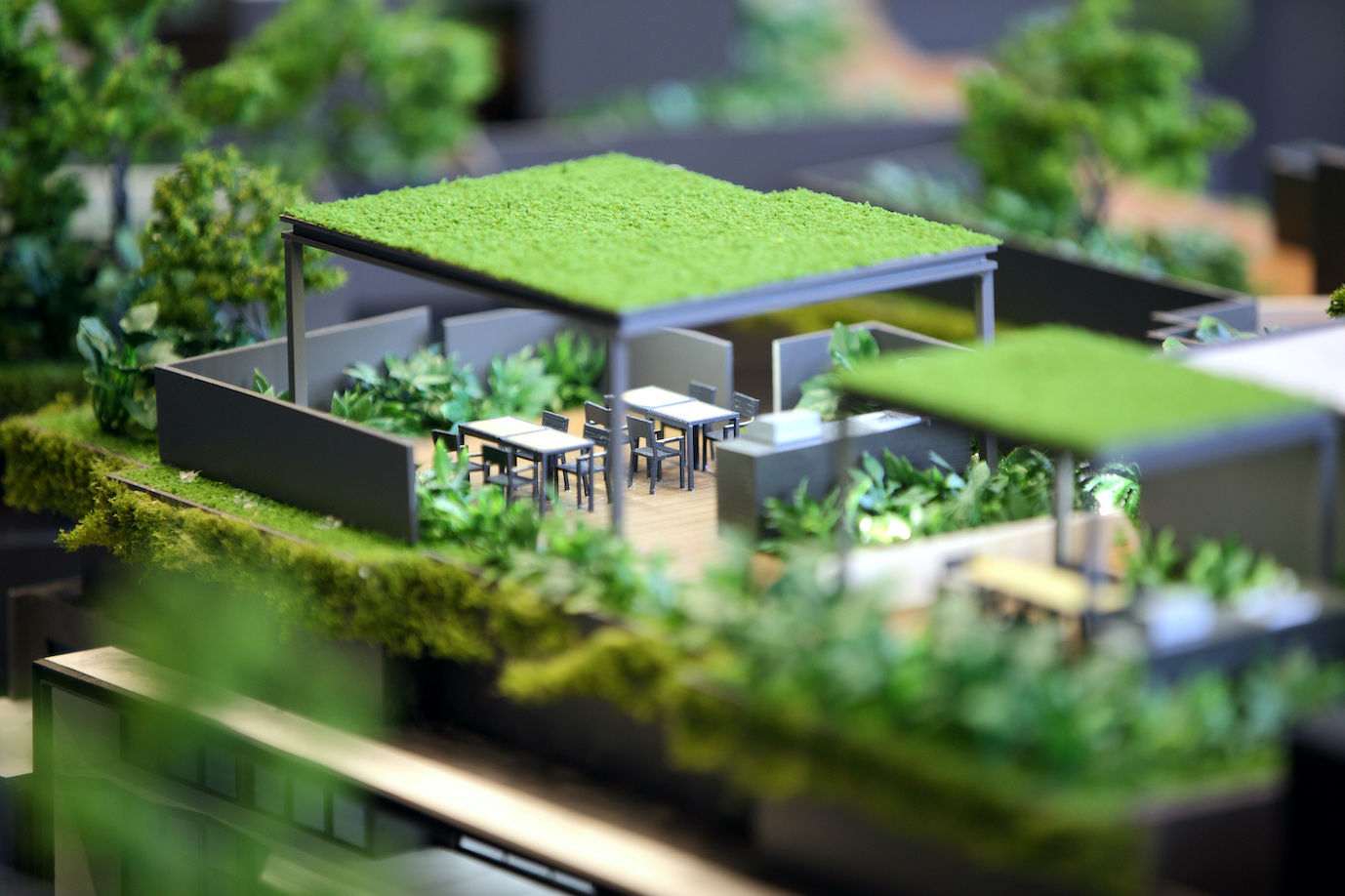 DAINTREE-RESIDENCE-scale-model - EDGEPROP SINGAPORE