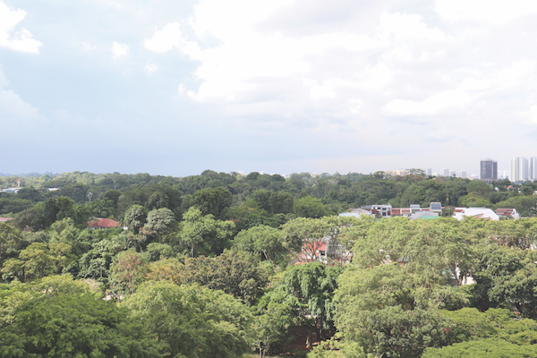 Unblocked view of the greenery from the balcony of the living area (Credit: EDMUND TIE) - EDGEPROP SINGAPORE