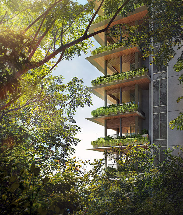 EDGEPROP SINGAPORE - greenery at 15 Holland Hill