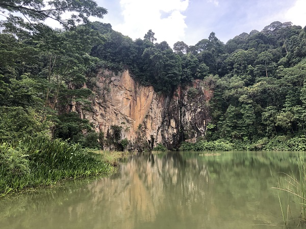 HILLVIEW - Dairy Farm Nature Park holds a gem – the Singapore Quarry, which is roughly 3km along the walking trail