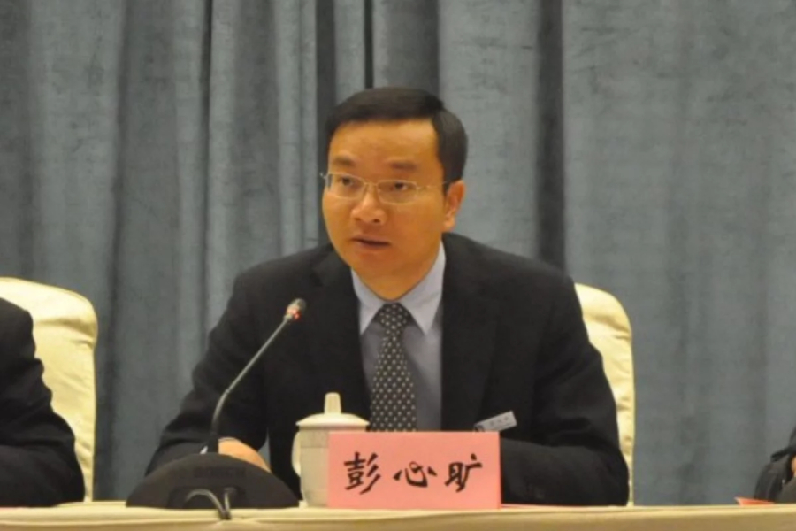 Peng Xinkuang, chairman and former chief executive of Shanghai-based SRE Group Limited. Photo: Weibo