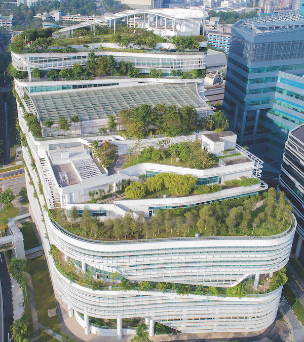 affinity with nature in Singapore - EDGEPROP SINGAPORE