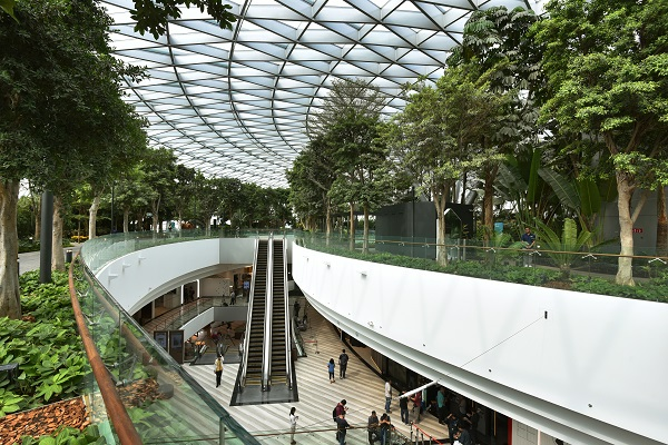 Jewel Changi Airport boasts vast indoor gardens, including 2,000 trees and 100,000 shrubs