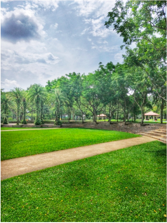 CHOA CHU KANG - This was taken at 1pm in the afternoon, yet the air was fresh and the weather wasn't stiflingly hot, thanks to the wealth of trees densely populating the park.