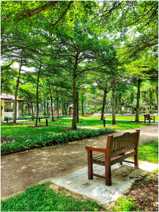 CHOA CHU KANG - Choa Chu Kang Park is clean, and filled with soothing greenery