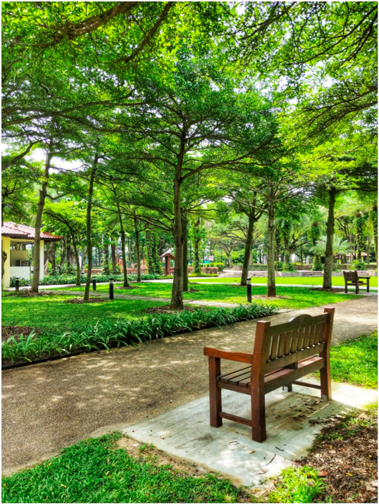 CHOA CHU KANG - Choa Chu Kang Park may be small at only 11 ha, but it captures a pristine slice of nature and is home to many Singaporean species of flora and fauna - EDGEPROP SINGAPORE