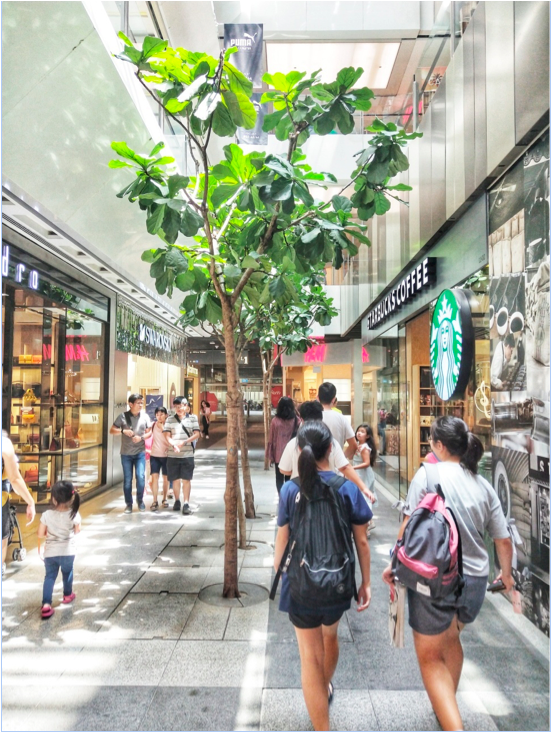 JURONG EAST - J Gateway is a short stroll away from the likes of glamorous JEM, with its trendy interiors and fashionable stores