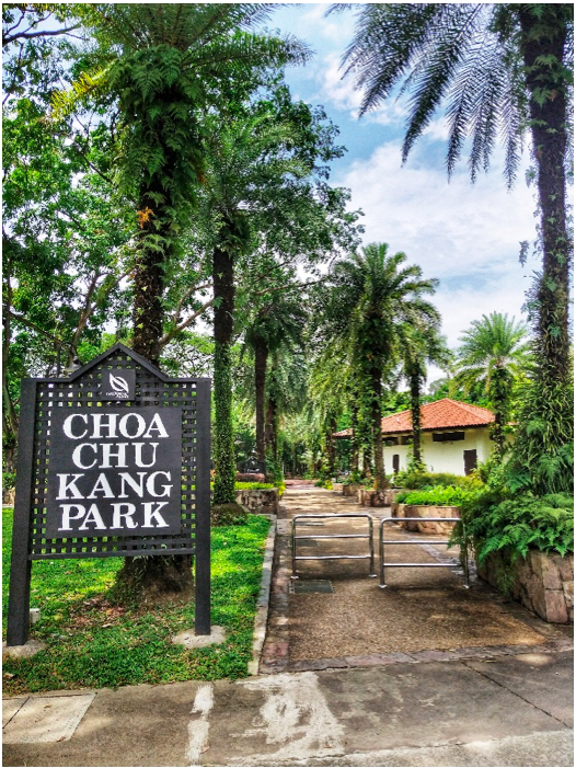 CHOA CHU KANG - Choa Chu Kang Park has four different areas and is home to diverse birdlife