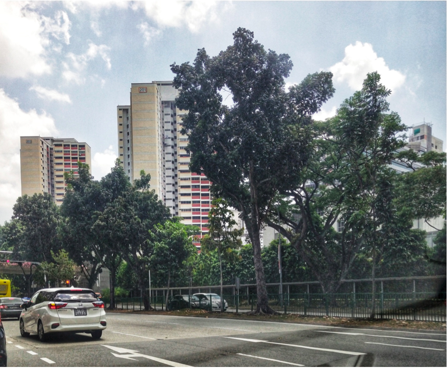 JURONG EAST - While home to a significantly smaller HDB population compared to Jurong West, Jurong East is big on personality, with a clean and welcoming infrastructure