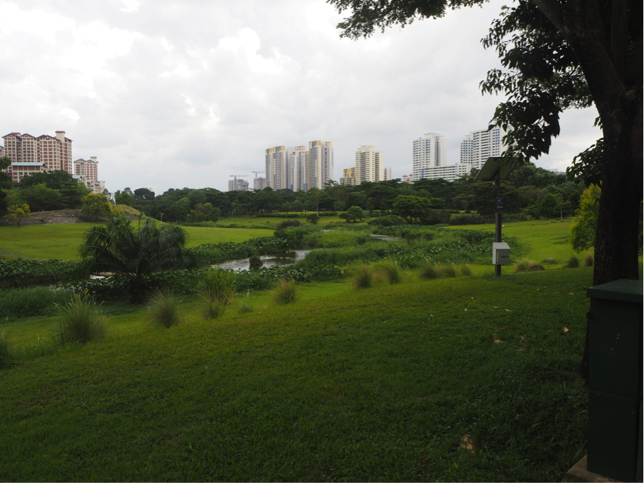 Bishan HDB Estate Room with A View EdgeProp Sg
